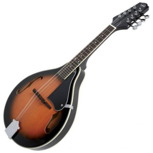 VGS 505.430 A-1 MANDOLIN KOFFERREL