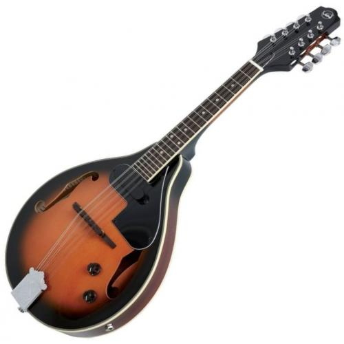 VGS 505.440 A-1 MANDOLIN KOFFERREL