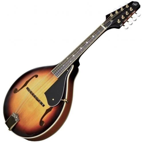 VGS 505.446 A-2 MANDOLIN KOFFERREL