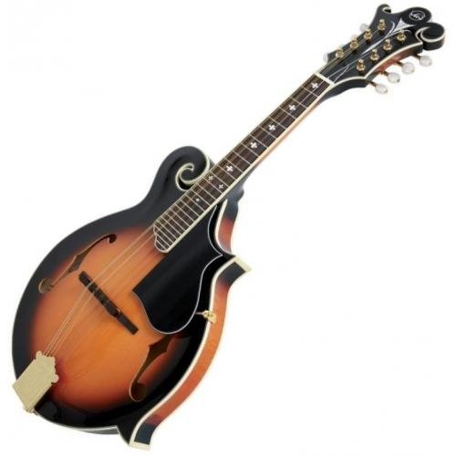 VGS 505.455 F-3 MANDOLIN KOFFERREL